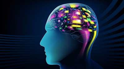 شرکت رسام یو پی اس : تولید نخستین رابط مغز به مغز انسانی